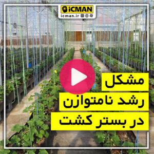 گلخانه هوشمند